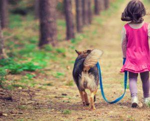 Не навязывайте собаке общество ребенка